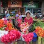 Fijian Flower Market, Suva, Fiji